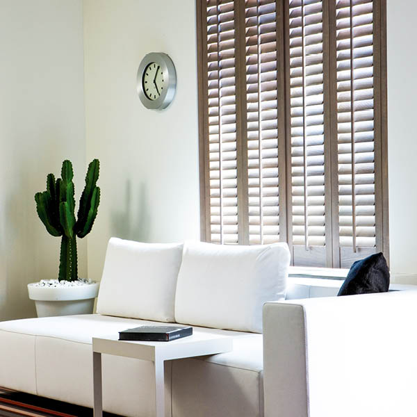 full height mahogany shutters with cactus